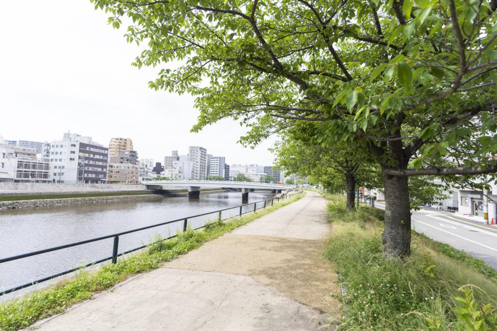 鷹野橋の川沿い